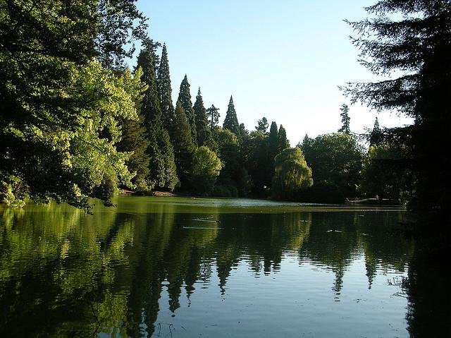 Laurelhurst Park pond