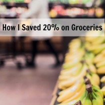 How I Saved 20 Percent on Groceries | vegetarianPDX